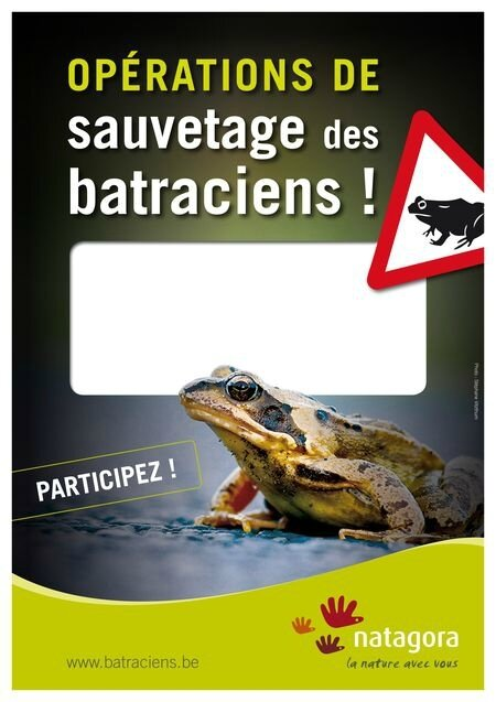 csm_Affiche_Operation-sauvetage-batraciens_5e417917cf