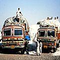 Ogm : fin du rêve monsanto en inde ?