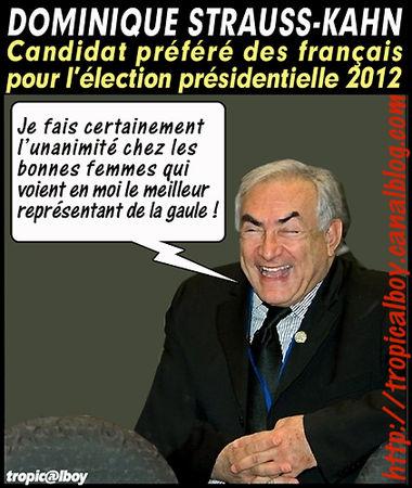 la_gaule_de_dsk