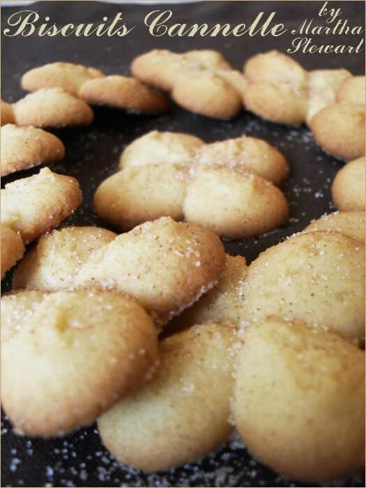 biscuits presse cannelle 1
