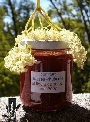 Confiture de fraise-rhubarbe sureau de Cuisine sauvage