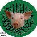 Muslim Cochon