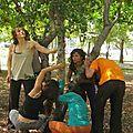 autour de l'arbre 2