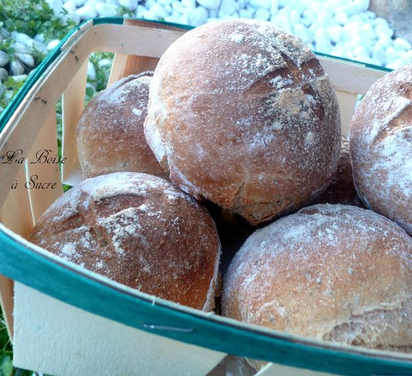 Petits pains 2