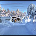 paysage_hiver_7