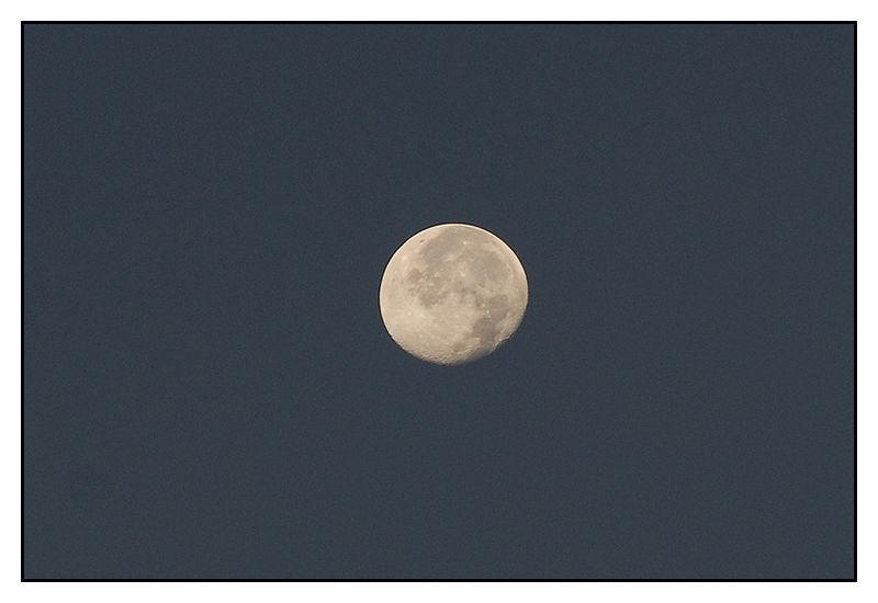 Lune du Matin, Photo M. Bordin...
