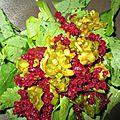 Crudité de fanes de navet, ail nouveau et betterave rouge