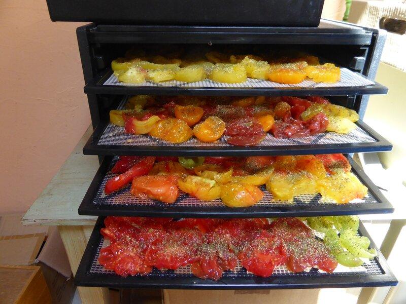 2-tomates séchées (5)