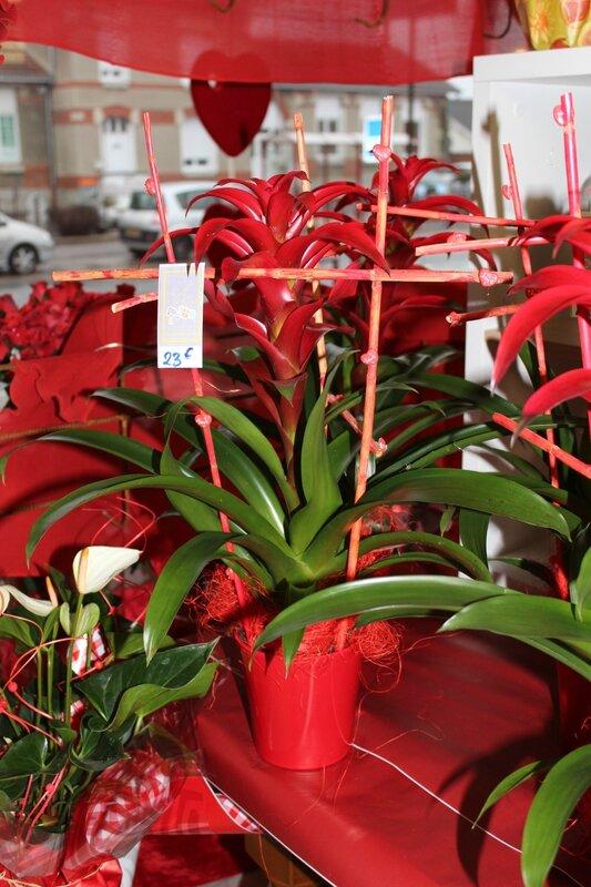 saint valentin 2017 au fil des fleurs 018