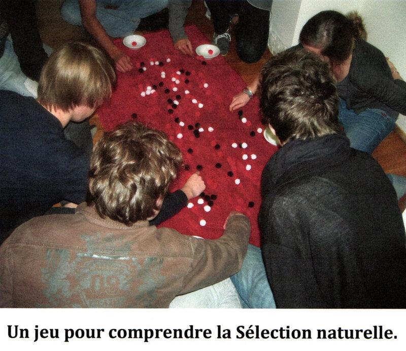 un jeu pour comprendre la sélection naturelle