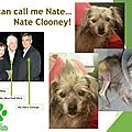 You can call me... nate clooney