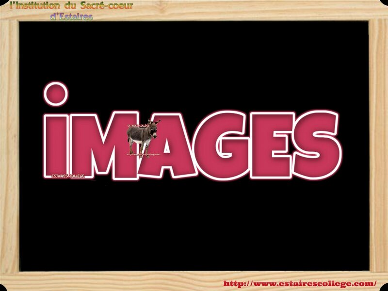 000 iMAGES