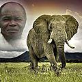 Kongo dieto 3189 : le grand maitre muanda nsemi parle de l'occupation harmonieuse des territoires de la rdc !