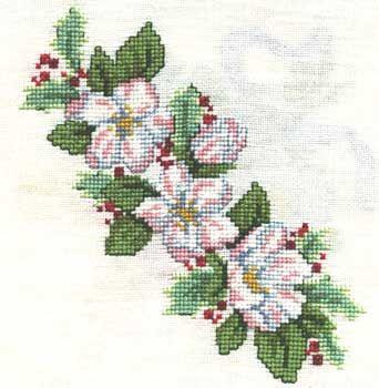 Fleurs de Noêl