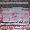 Tifo des 5 ans des Red Sharks