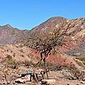 Quebrada de Cafayate7