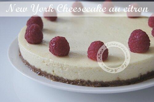 Cheesecake0007