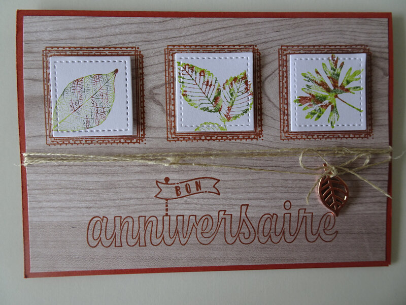 20 Carte Swirly frames et Lot Racine de la vie