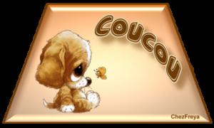 cou003