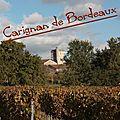 20121111 Carignan de Bordeaux