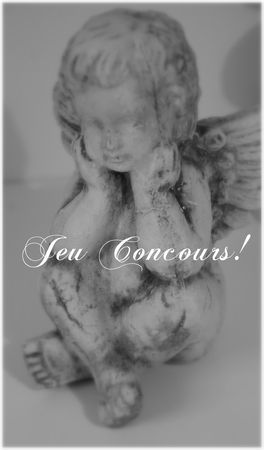 fee_scie_concours