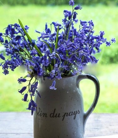 stock-photo-bouquet-of-wild-hyacinth-jug-with-title-wine-of-the-country-with-wild-hyacinth-602719661