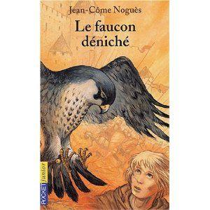 faucon_d_nich_
