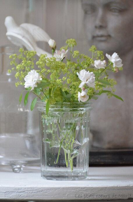fleurs_077