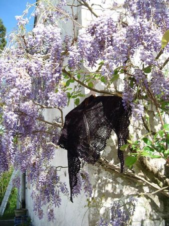 holden shawlette madelinetosh duchess 010