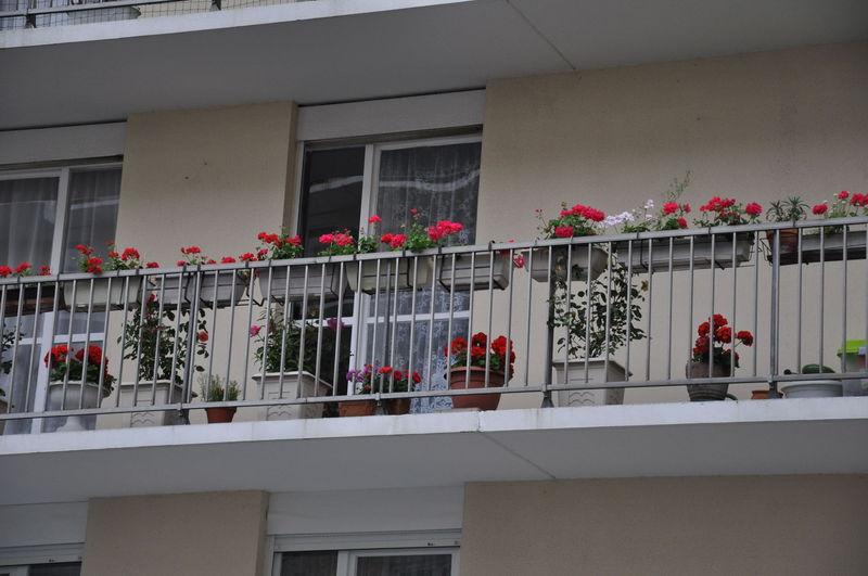 jardins fleuris 0300031