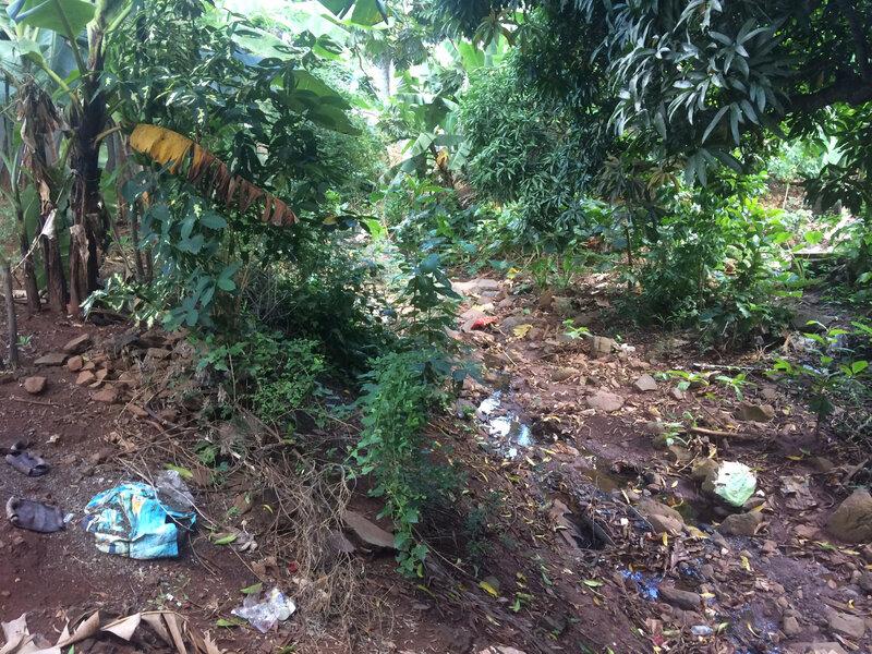 sur le pont d'Acoua, la rivière jonchée de déchets