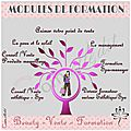 Un exemple de publication pour la page facebook de bvf