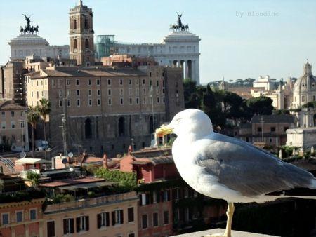 Rome vue du Palatin mai 2012