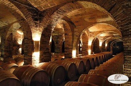LISLE_SUR_TARN_Chateau_de_Saurs_le_chai_a_barriques_sous_le_chateau