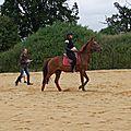équitation d'extérieur - parcours en terrain varié (144)