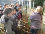 jardin21nov (2)
