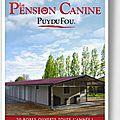 Pension pour chien - le puy du fou