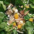 Plat complet : salade mâche, riz, thon et oeufs durs