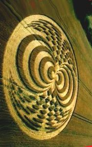 crop_circles_art_in_the_landscape