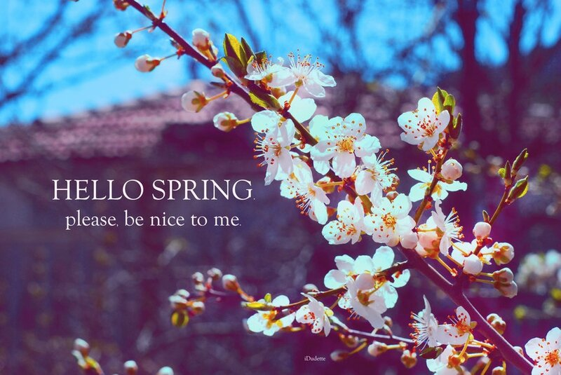 hello_spring_by_d1sabl3-d4reqy8