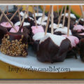 Happy birthday my blog !!!! et sucettes chocolat-sésame