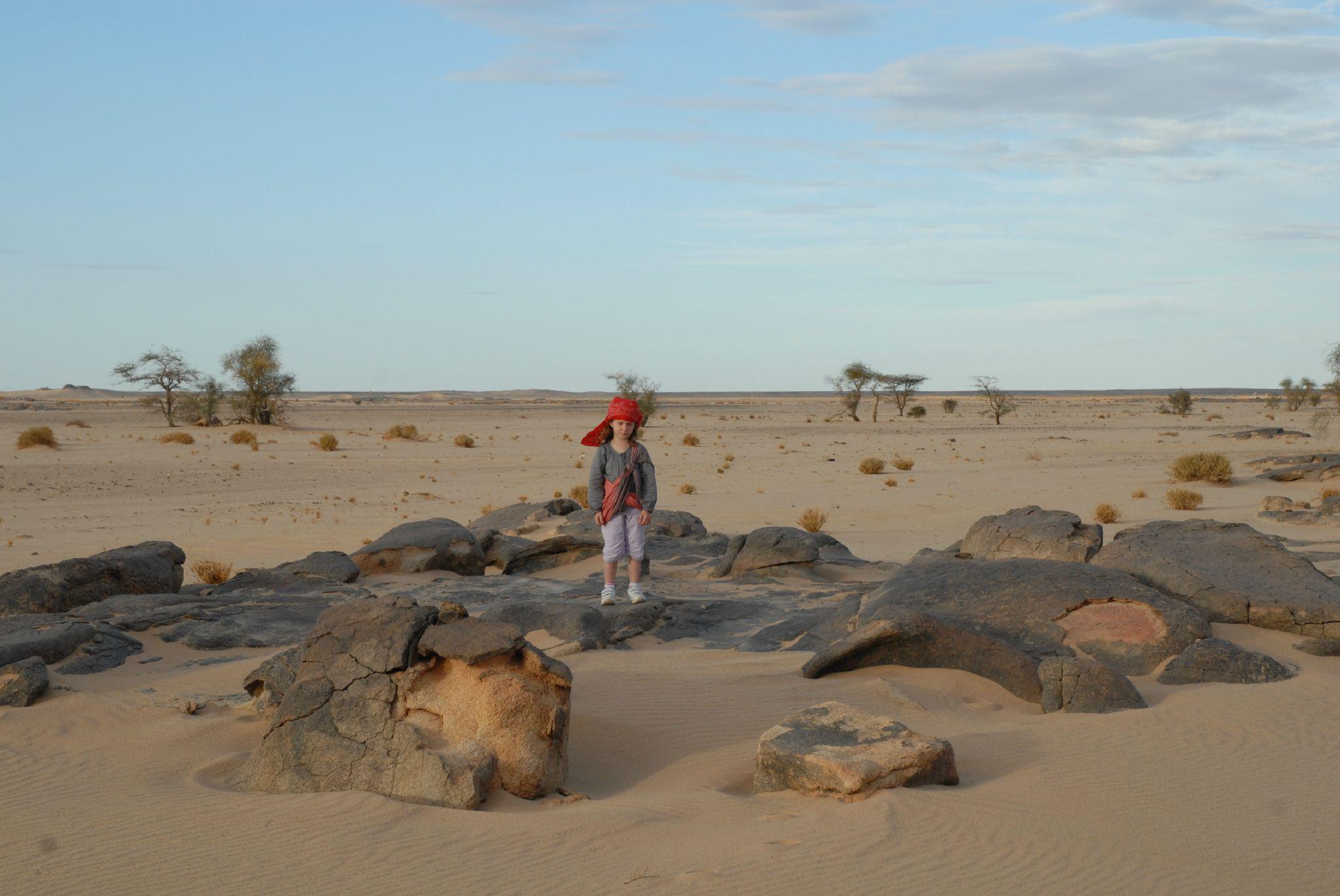 mauritanie et mali 2009 022