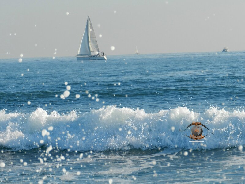 Palavas les Flots