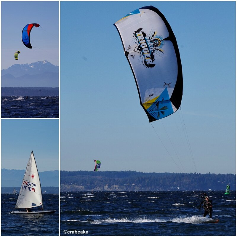 Golden Gardens Kite Surf Seattle