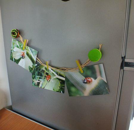 magnets porte photos - stephaniebricole - photo finale