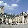 Dijon : édouard cavin, candidat fn