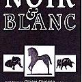 Biennale du Noir & Blanc, mars 2011