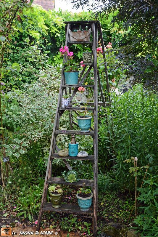 PAT_7526-Petit-jardin-de-St-Fiacre