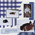 Les chiennes dans la neige