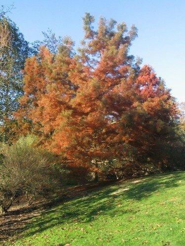 automne072